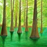66 九大の森の落羽松 木原恵美